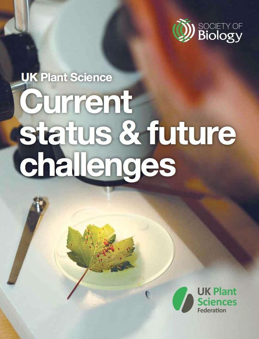 status report cover