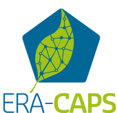 logo-era-caps