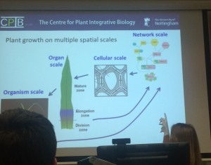 Multi-scale Plant Biology